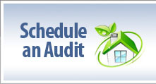 Schedule an Audit